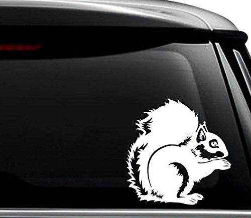 Helmet Nuts (Squirrel Animal Nut Decal Sticker For Use On Laptop, Helmet, Car, Truck, Motorcycle, Windows, Bumper, Wall, and Decor Size- [10 inch] / [25 cm] Tall / Color- Matte Black)