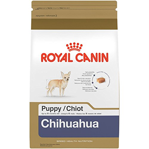 Breed Chihuahua (ROYAL CANIN BREED HEALTH NUTRITION Chihuahua Puppy dry dog food, 2.5-Pound)