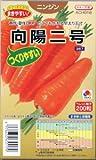 【種子】ニンジン 向陽二号 ペレット種子 約200粒