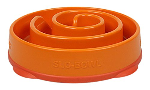 Slow Feeder Dog Bowl Fun Feeder Stop Bloat Bowl for Dogs by Outward Hound, Small, Orange