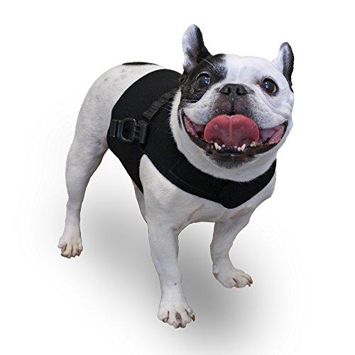 Walkin' Front Dog Vest