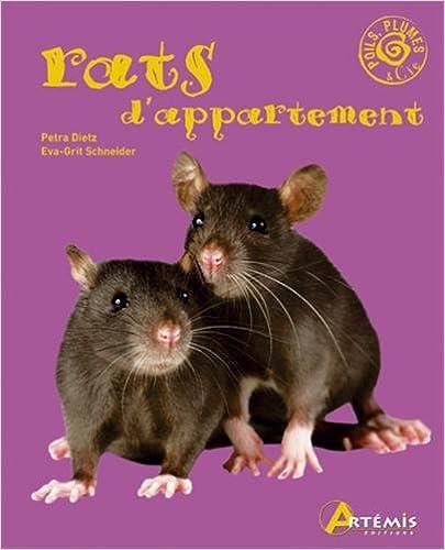 Lire Rats d Appartement pdf
