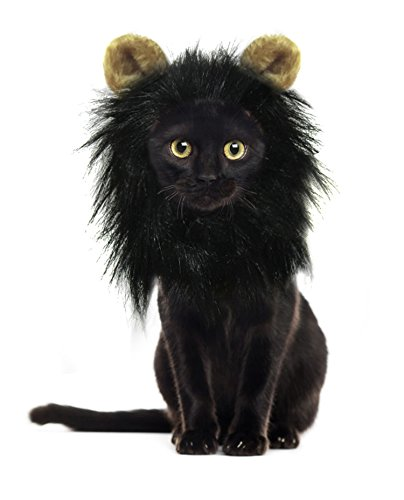 "Onmygogo Lion Mane Wig for Cats with Ears, Funny Pet Cat Costumes for Halloween Christmas (Small (for neck circumference 10""-11""), Black)"