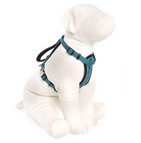 KONG Comfort Padded Chest Plate Dog Harness offered by Barker Brands Inc(Large, Blue). King Harness