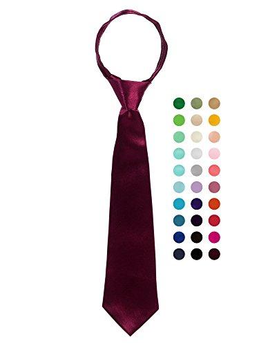 Bello Giovane Mens 100% Handmade Satin Zipper Neck Tie (Mens One Size, Burgundy)