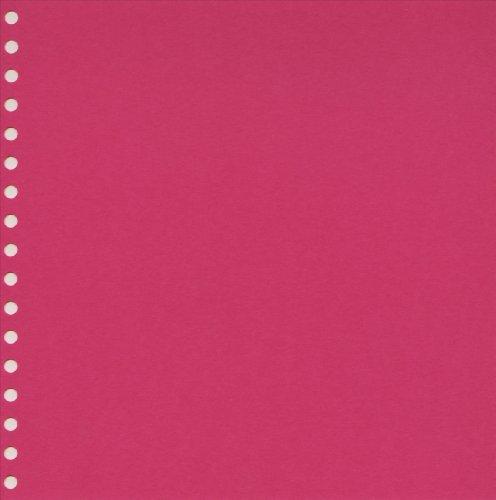 23 Ring (Semikolon 23-Ring Album Refills, 12 Acid-Free Sheets, Pink (49506))