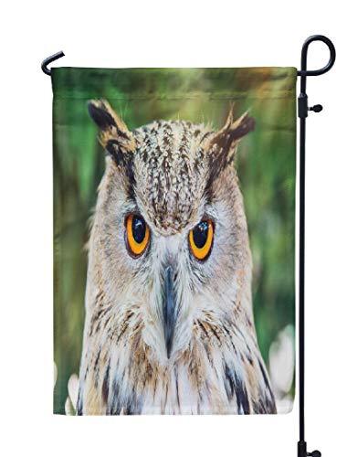 Soopat Owl Seasonal Flag, Head Shot Owl Portrait Wild Owl Eagle Animal Beautiful Weatherproof Double Stitched Outdoor Decorative Flags for Garden Yard 12''L x 18''W Welcome Garden Flag]()