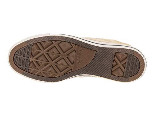 Sneakers Chuck Converse Top Mode Beige Low Etoiles Sneaker Taylor wXqvqdA4
