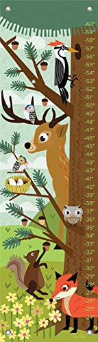 Oopsy Daisy Growth Charts Woodland Creatures by Jenn Ski, 12 by 42-Inch