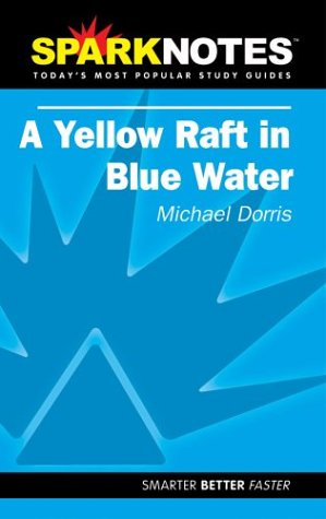 book cover of A Yellow Raft in Blue Water