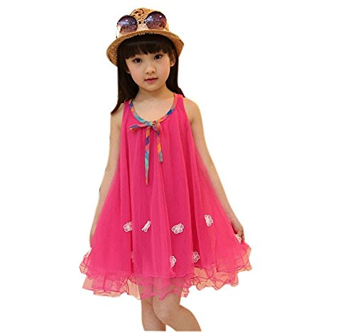 Ivan Johns Little Girls Applique Floral Vest Tutu Princess Costume Dress Gauze Tutu Dress (2T, Red) ()