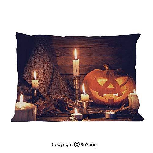 Halloween Bed Pillow Case/Shams Set of 2,Rustic Home