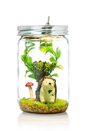 Marmelada Mr.Hedgehog LED Story In a Jar Night Light Nursery Baby Children and Kids Room Bedtime Night Lamp Inner Timer Hand Made