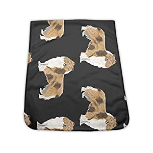 NiYoung Cooling Towels for Neck Wrap, Instant Cool Towel Rough Collie Dog 40x12 Inches, Soft Ice Towel, Super Breathable Microfiber Chilly Towel for Yoga, Sports,Golf, Workout 11