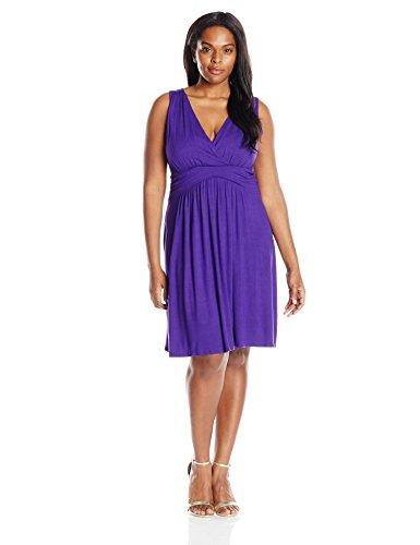 Star Vixen Women's Plus-Size Sleeveless Empire Waist Summer Sun Dress, Purple 2X ()