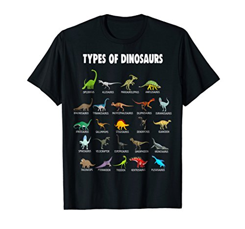 Types of Dinosaurs Fossil T Shirt Dino Chart Kid Gift Tee ()