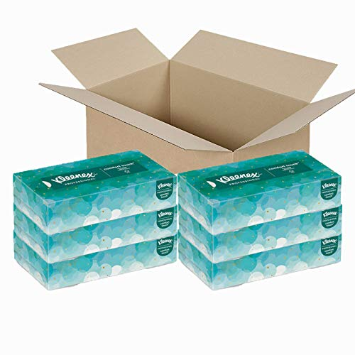 Professional Facial Tissues, 100 Tissues per Box, 6 Box