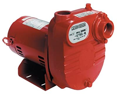 Red Lion RL-S50 1/2 HP 2940 GPH Self Priming Cast Iron Effluent Pump