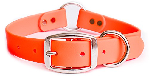 - Waterproof Dog Collar with Heavy Duty Center Ring | Orange Hunting Dog Collar for Small, Medium, Large, or XL Dogs