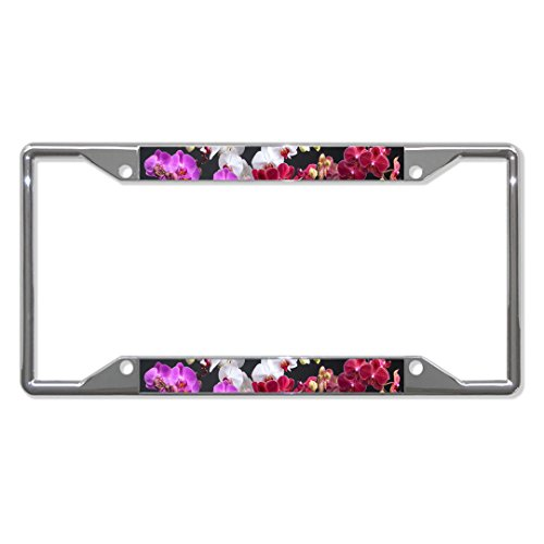 PHALAENOPSIS Orchid Flower Metal License Plate Frame Tag Holder Four Holes Perfect for Men Women Car garadge Decor ()