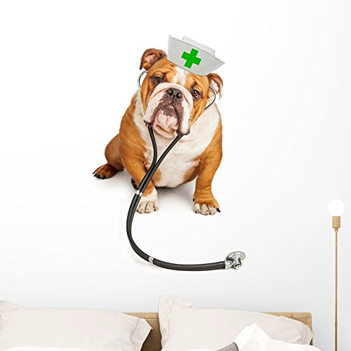 Bulldog Nurse with Stethoscope Wall Decal by Wallmonkeys Peel and Stick Graphic (36 in H x 26 in W) WM359870