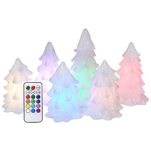 wax tree - 6