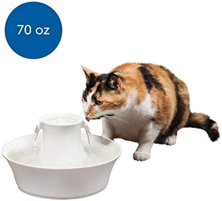 PetSafe Drinkwell Avalon Pet Water Fountain, Ceramic Drinking Fountain for Cats and Dogs, 70 oz. Water Capacity
