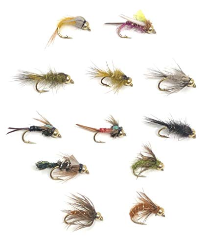 Feeder Creek Fly Fishing Bead Head Assortment - 72 Flies in 12 Trout Crushing Wet Patterns (Copper John, Prince, Caddis, and More) Sizes 12-16 - Fishing Soft Hackle Flies