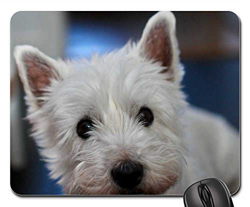 Mouse Pads - Dog Westie Terrier White West Highland Small Pet