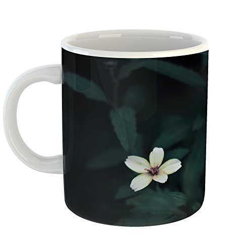 Westlake Art - Coffee Cup Mug - Bush Flower - Modern Picture Photography Artwork Home Office Birthday Gift - 11oz - Bush Amaryllis