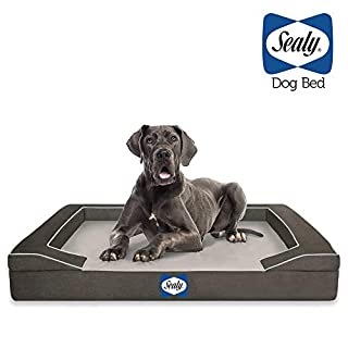 Sealy Dog Bed for Dogs, Modern Gray, X-Large