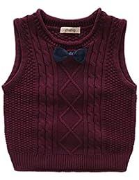 7ea66deec Amazon.com  Vests - Sweaters  Clothing
