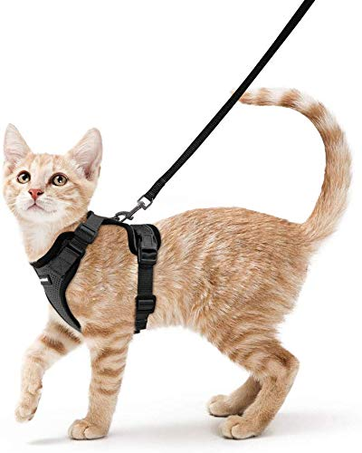rabbitgoo Cat Harness and Leash for Walking, Escape Proof Soft Adjustable Vest Harnesses for Cats, Easy Control…
