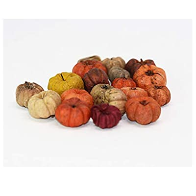 Dollhouse Miniature Autumn Pumpkin Pods Seasonal Decoration: Toys & Games