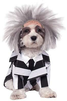 Beetlejuice Dog Costume (FidgetKute Beetlejuice Pet Dog Costume Show One)