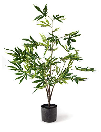 Southside Plants Artificial Marijuana Plant with Realistic Cannabis Indica Leaves in Black Decor Pot - Beautiful Fake Weed Prop Perfect Decoration for CBD or Smoke Shop (The Best Smoke Shop)