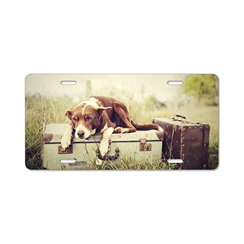 Smoke Boxcar (License Plate Frame, Dog On The Box Car Tag Frame,License Plate Holder, Decorative License Plate Frame)