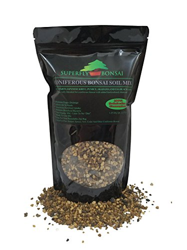 Conifer Bonsai Soil Mix - Professional Sifted and Ready to Use Tree Potting Blend in Easy Zip Bag - Kiryu, Akadama, Black Lava, Pumice & Charcoal (1.25 Dry Quart)