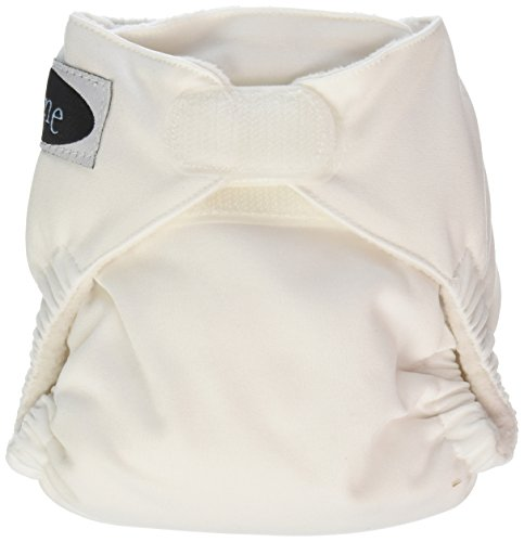 - Imagine Baby Products Newborn Stay Dry All-in-One Hook and Loop Cloth Diaper, Snow