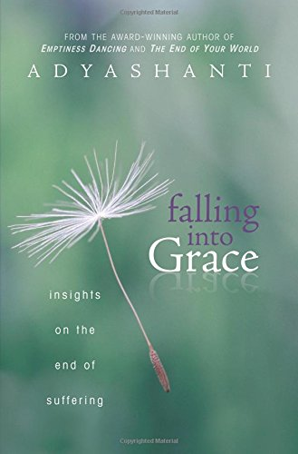 Image of Falling into Grace: Insights on the End of Suffering
