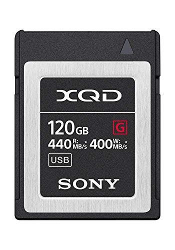 - Sony Professional XQD G-Series 120GB Memory Card (QD-G120F) (Renewed)