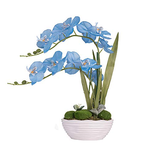YSZL Large Artificial Potted Orchid Plant, Silk Flower Arrangement with Ceramics Vase, Water Blue