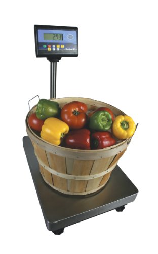 "Fairbanks Scales 25848 Series III General Purpose Bench Scale, 24"" Length, 18"" Width Platform, 600 lbs Capacity, 0.2 lbs Readability"