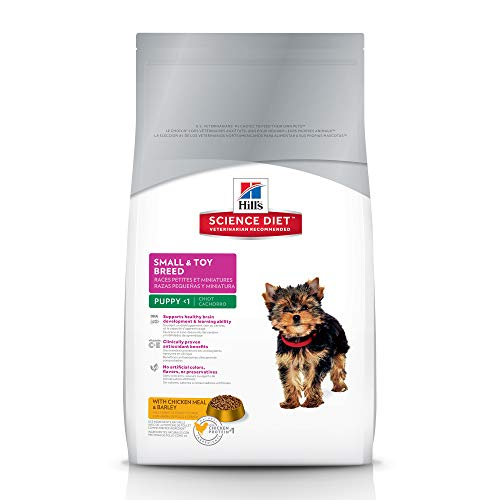 The Best Small Puppy Food