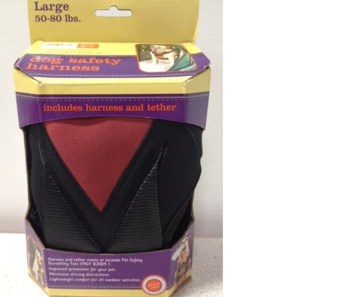 Bergan Dog Auto Harness with Tether – Large 50-80 Lbs, My Pet Supplies
