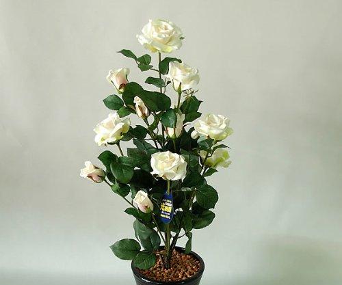 国内生産で安心の光触媒ばら(バラ薔薇)2本立 白(ホワイト)光触媒とアミノ酸のダブルコーティング 消臭力と抗菌力を発揮するアートフラワー(造花) B004P0C19E