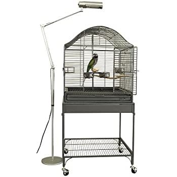Amazon Com Zoo Med 24975 Avian Sun 5 0 Uvb Compact