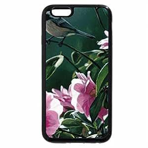 iPhone 6S / iPhone 6 Case (Black) Morning Bird