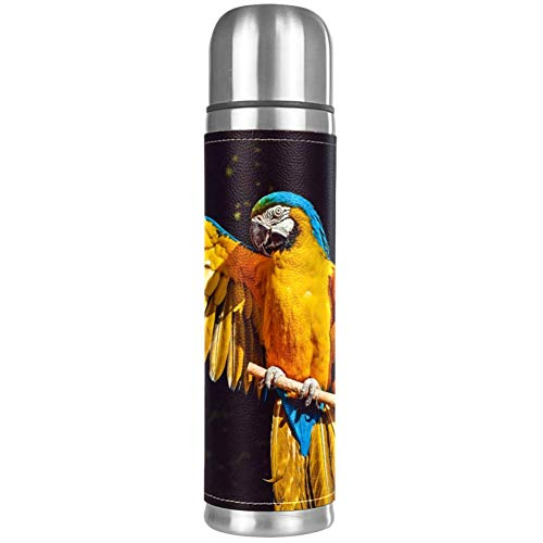 MUOOUM Vacuum Insulated Water Bottle Parrot Ara Macao Animal Stainless Steel Water Bottle Kids 17 oz ()