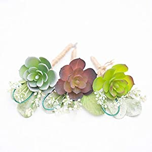 Richland Delford Succulent Boutonniere 20